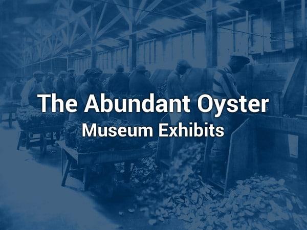 Delaware Bay Museum