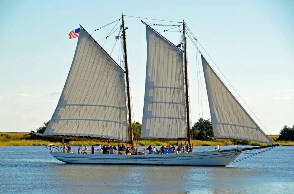 Trenton Sails